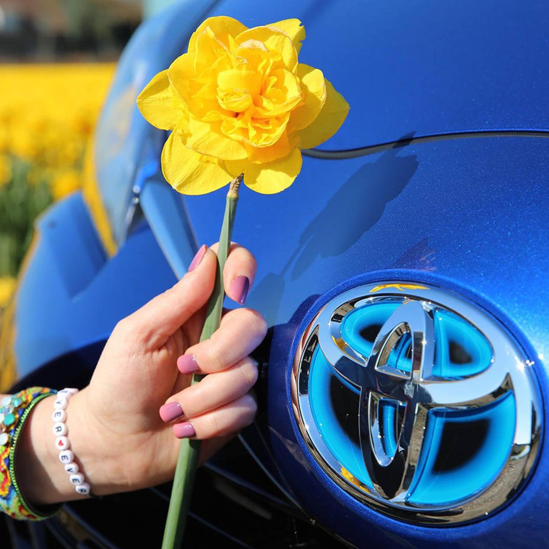 Toyota Frühlingscheck